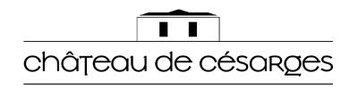 Le Château de Césarges – Mariage Séminaire Hotel Bourgoin Lyon